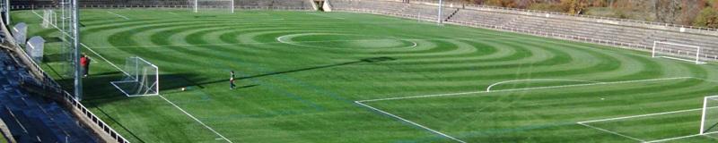 Campo fútbol (3)