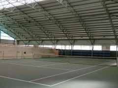 Tenis-zelaia