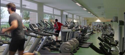Gimnasio Musculación